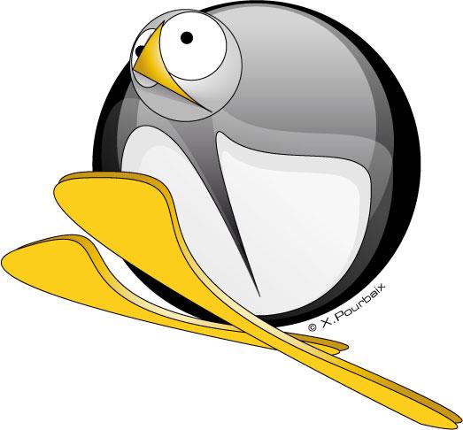 Jouez club des pingouins hossegor - Jasper le pingouin ...